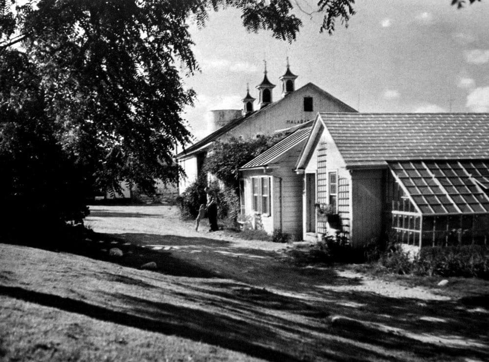 1954-g.jpg