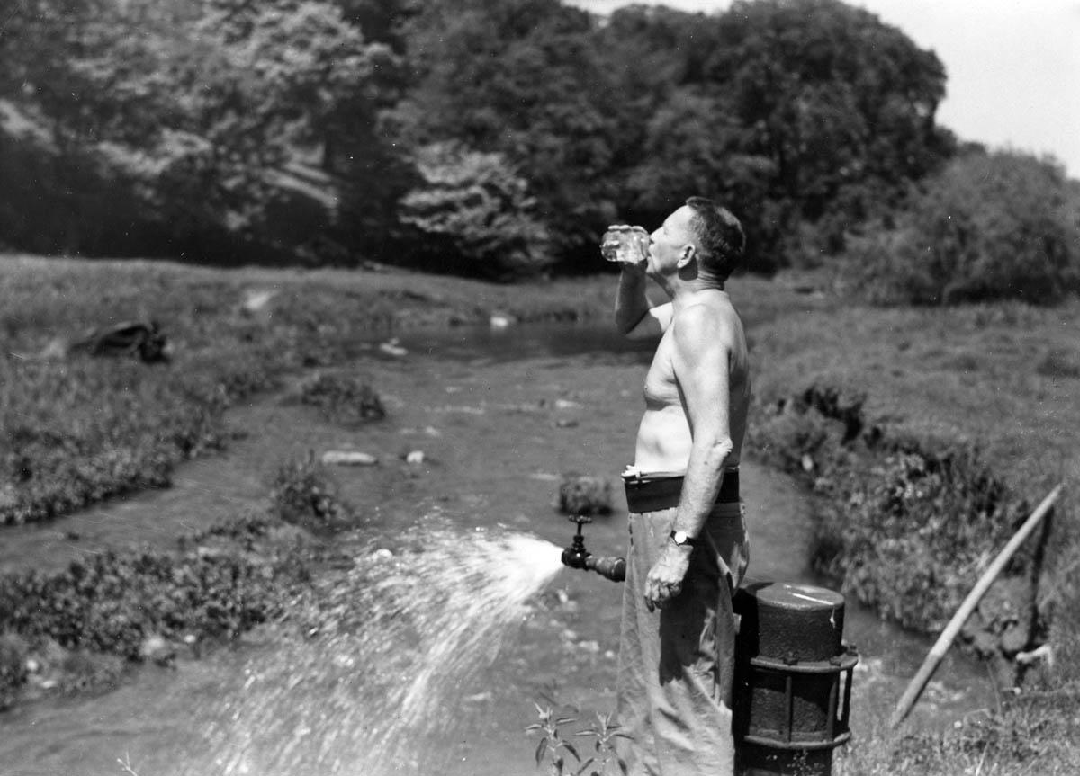 Bromfield drinking water in the fields