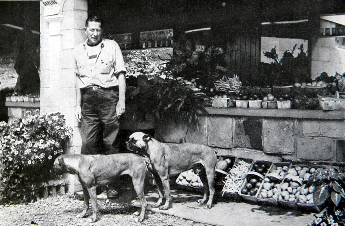 Bromfield and two dogs